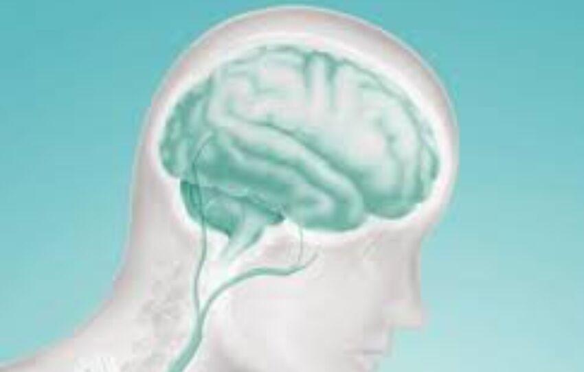 Diabetes e Alzheimer: um motivo para evitar os altos e baixos da glicose