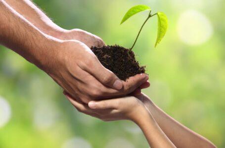 A importância de uma ATER Social fortalecida e valorizada